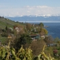 bodensee-2012-img_7039