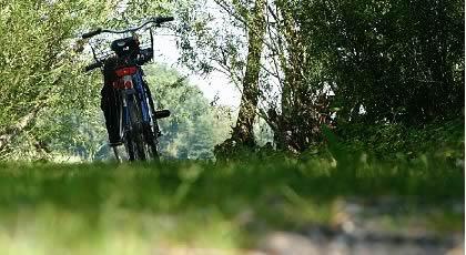 Radtfahren Bodensee
