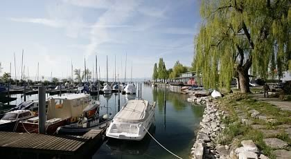 Bodensee Info